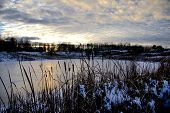 picture of bulrushes  - Bulrushes overlooking an ice covered lake at sunset - JPG