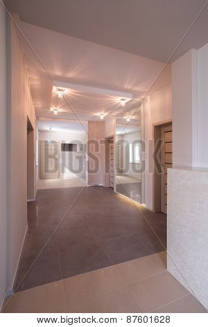 Spacious Illuminated Anteroom