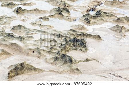Beach Dunes Created By The Low Tide