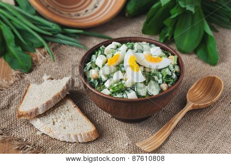 Spring salad with wild leak, eggs and mayonnaise in rustic style bowl