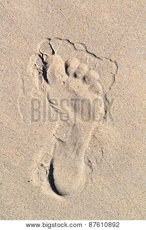 Footprint In The Sand Background