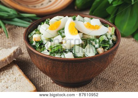 Green spring salad with chopped garlic and ramson served in rustic bowl
