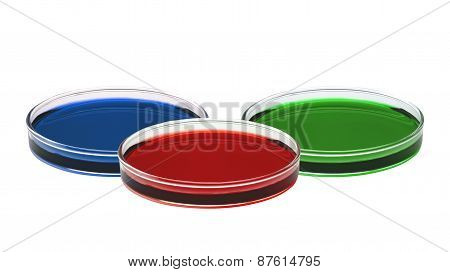 Color Liquid In Petri Dishes Isolated On White Background