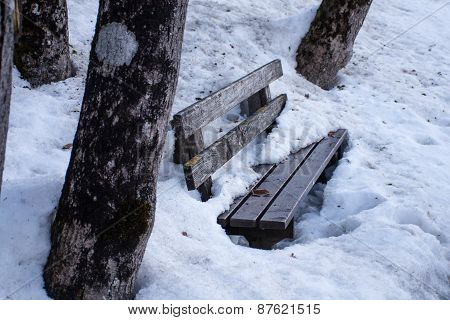 Park Bench Made Of Wood Between Tree Trunks Covered With  Dirty Old  Snow
