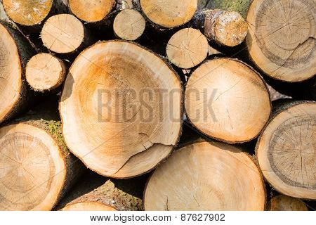 Pilled Wood Background