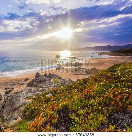 Coastal landscape on Corse, France, Europe.