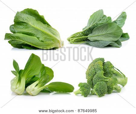 Broccoli ,lettuce , Chinese Broccoli ,cos, Bok Choy  On White Background