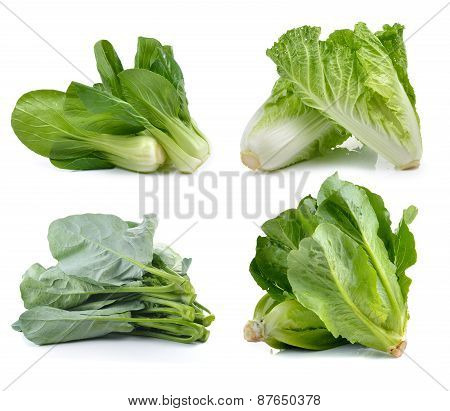 Fresh Chinese Cabbage ,bok Choy, Cos , Chinese Broccoli On White Background