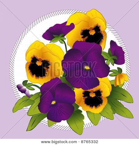 Purple & Gold Pansies