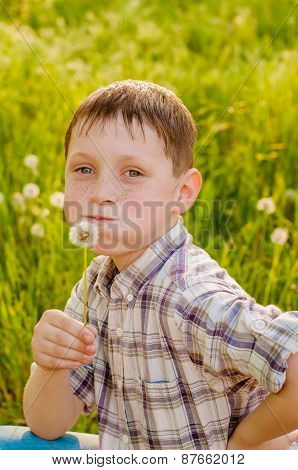 Boy on summer nature with dandelions