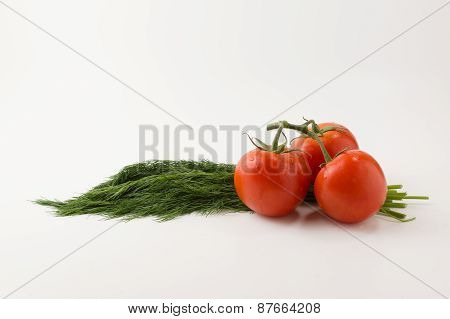 Tomatos And Fennel