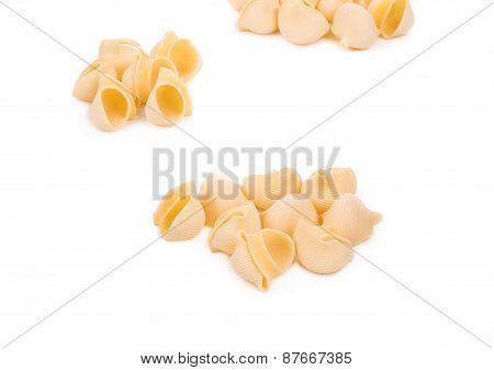 Uncooked pasta lumaconi.
