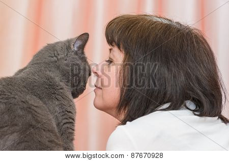 Brunette Woman With A British Cat