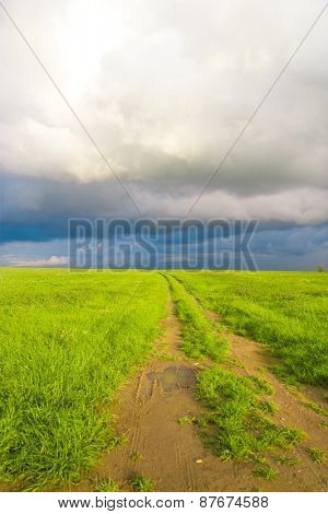 On a Country Lane Vibrant Colors