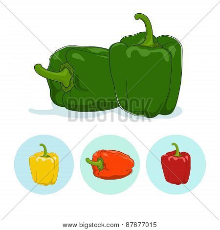 Icons bell pepper,sweet pepper or capsicum