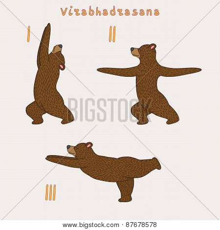 Illustration of three yoga bears - virabhadrasana (warrior) pose