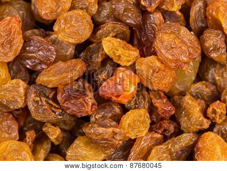Golden raisins close up. Macro.