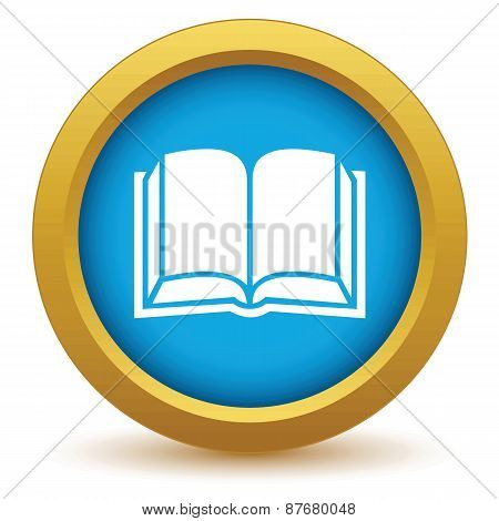 Gold book icon