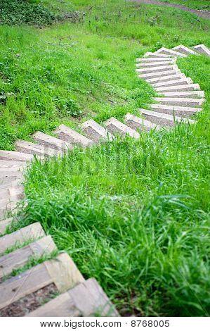 Winding Footpath Steps Through Grass