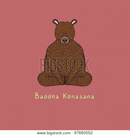 Illustration Of Baddha Konasana Yoga Pose - Animal Yoga