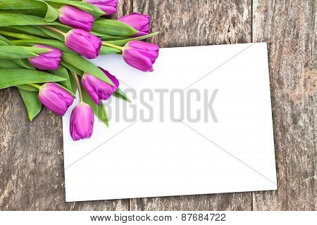 Violet Tulips On The Oak Brawn Table With White Sheet Of Paper 5