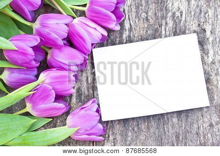 Violet Tulips On The Oak Brawn Table With White Sheet Of Paper 6