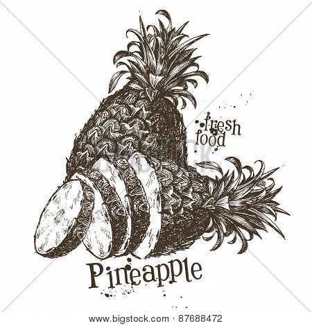 pineapple vector logo design template. fruit or food icon.