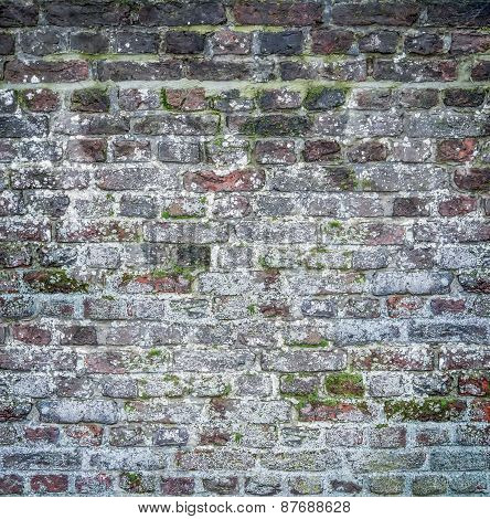Mossy And Sloppy Brick Wall Texture