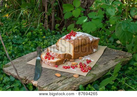 Fruit Cake With Red Currant In The Garden