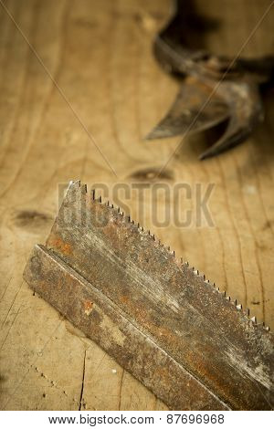 Old Saw Blade