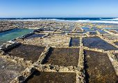 picture of gozo  - ancient salt in Qbajjar island of Gozo are still used for the production of sea salt - JPG