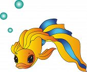 stock photo of goldfish  - goldfish with a striped tail and  bubbles of air - JPG