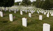 pic of arlington cemetery  - Arlington National Cemetery Washington d - JPG
