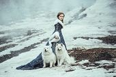image of blue animal  - The woman in blue coat walk with a dog - JPG