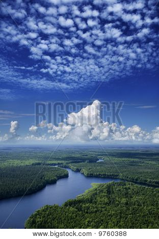 Aerial View The Forest River