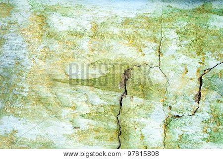 Green Painted Wal, Damaged Surface