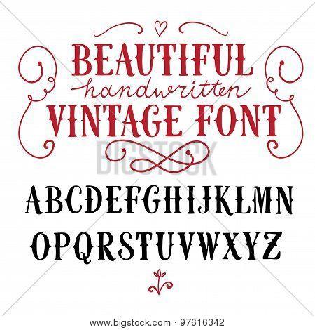 Vintage  Vector Font