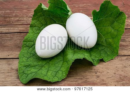 Two Goose Eggs On The Leaves Of Burdock