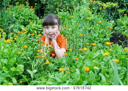 Surprised Little Girl Among The Flowers Of Calendula