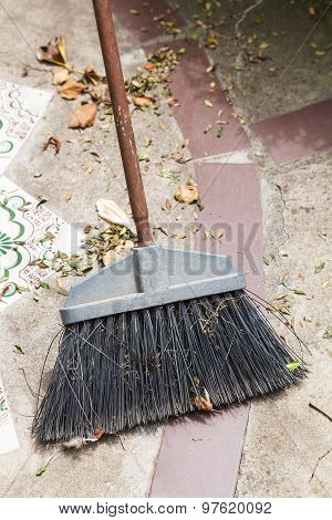 Broom Sweeps Fallen Leaves