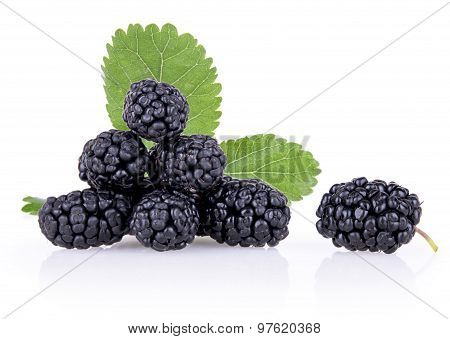 Ripe Mulberry Berries With Leaves