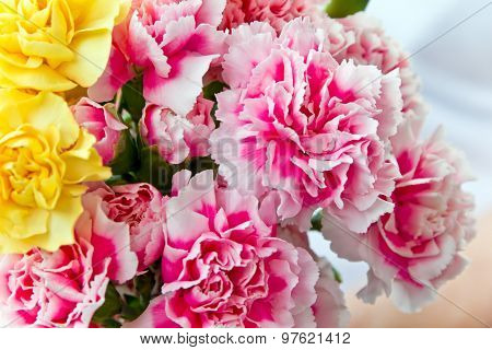Red And Yellow Carnations