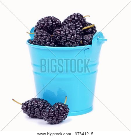 Mulberry Berries In Small Bucket
