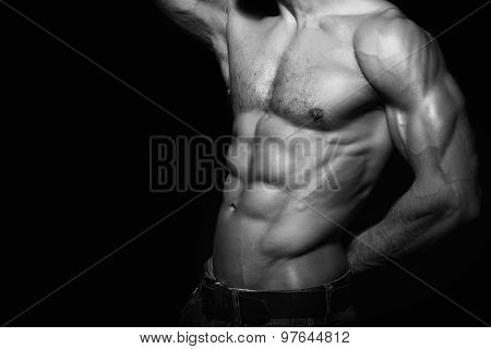 Muscular and sexy torso of young man.