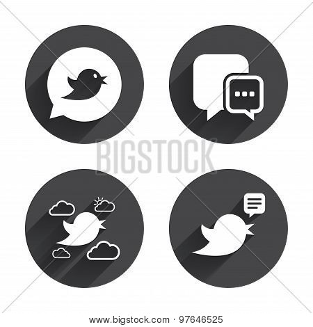 Birds icons. Social media speech bubble.