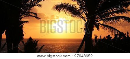 Tropical sunset with ocean palm trees