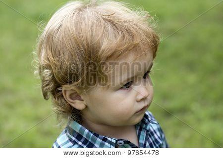 Boy Kid On Green Grass