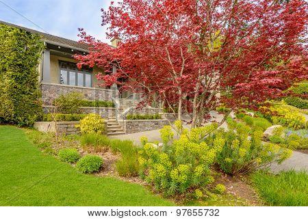 Outdoor landscape in North Vancouver, British Columbia, Canada.