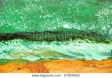 Green Surf On Sand Seaweed Waves