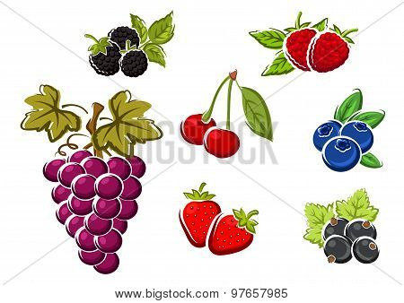 Sweet ripe isolated berries and fruits